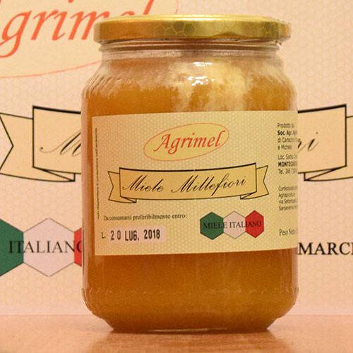 apicoltura-4